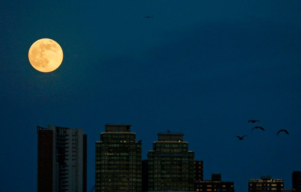 A perigee moon raises over high rise buildings in Hong Kong. Photo: AP/Vincent Yu