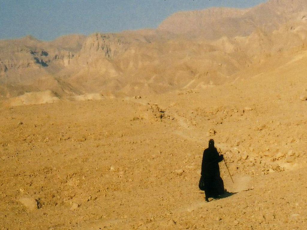 coptic-desert